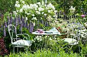 Kleiner Sitzplatz im Garten neben Lupine, Flieder und Weigelie