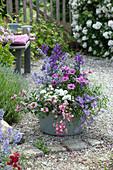 Große Schale in blau, rosafarben und weiß bepflanzt