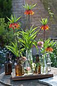 Einzelne Blütenstiele von Kaiserkrone und Lenzrose in Flaschen