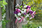 Kleiner Strauß aus Tulpen, Apfelblüten und tränendem Herz in Korb