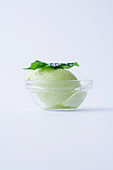 Kiwi sorbet in a glass bowl against a white background