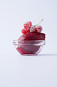 Red currant sorbet in a glass bowl against a white background