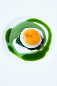 A fried egg on spinach purée and sorrel coulis