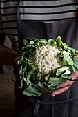 A men with a linen apron holding a cauliflower in his hands
