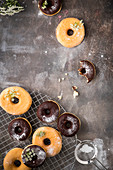 Donuts and chocolate donuts on a baking tray with powdered sugar and little white flowers