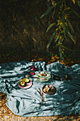 A picnic under a tree, with a picnic cloth on the ground with plates, avocado, bread