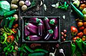 Frisch geerntete Auberginen in Steige, umgeben von Gemüse und Kräutern