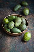 Avocados in a bowl