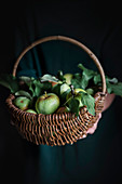 Frau hält Korb mit Äpfeln