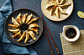 Fried gyoza dumplings with duck served with soy sauce ans sesame seeds