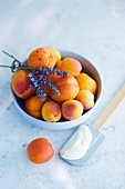Frische Aprikosen in einem Schälchen