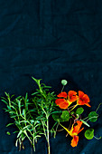 Rosemary and nasturtiums on a dark surface