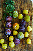 Fresh yellow plums, greengages and plums on a wooden surface (seen from above)