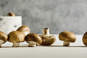 Fresh raw mushrooms, in white background, portobello variety