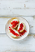 Sweet crostinis sandwiches with cheese and fresh red currants