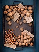 Walnuts, hazelnuts and pecan nuts on a vintage baking tray (seen from above)