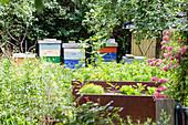 Bienenstand im Garten