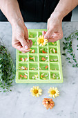 Floral ice cubes being made