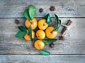 Frische Mandarinen mit Zimtstangen und Sternanis