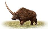 Elasmotherium, illustration