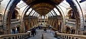 Natural History Museum, London, UK