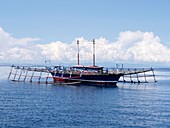 Outrigger fishing platform, Indonesia