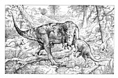 Allosaurus hunting, illustration
