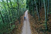Mountain biking in a forest in Switzerland