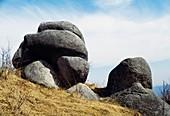 Rocks worn smooth by water, Piedmont