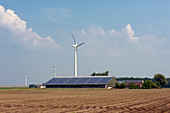 Wind turbine and solar panels