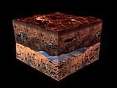 Underground water on Mars, artwork