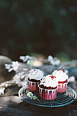Red beet cupcakes