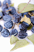 Dried sloes (close-up)