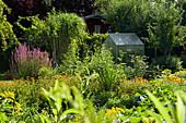 Naturgarten mit Gewächshaus und Gartenhaus