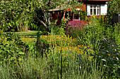 Naturgarten mit Gartenhaus
