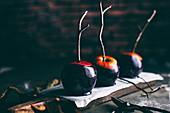 Halloween caramel apples with sticks on dark background