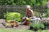 Frau bepflanzt Beet mit Gemüse und Sommerblumen