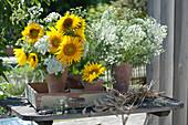 Sträuße aus Sonnenblumen und Wiesenkümmel