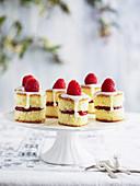 Mini Raspberry Sponge Cakes