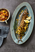 Fried North Sea mackerel with braised cucumber and fried potatoes