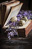 Wachteleier und lila Blütenzweige zwischen Seiten eines alten Buches
