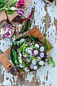 Chard, radish and green peas salad
