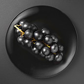 A bunch of black grapes on a black matte plate on a black background