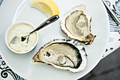 Oysters with mayonnaise sauce and lemon slices in french seafood restaurant