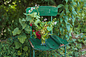 Currants on a green garden chair