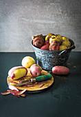Verschiedene Kartoffelsorten im Eimer und mit Schälmesser auf Schneidebrett
