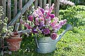 Violett-rosafarbener Strauß aus Rittersporn und Dahlien in Zink-Gießkanne