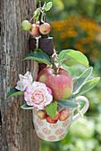 Tasse mit Apfel, Zieräpfeln und Rosenblüten an Pfosten aufgehängt