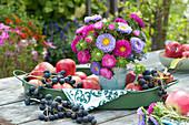 Strauß mit Sommerastern auf Tablett mit Äpfeln und Weintrauben