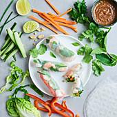 Vietnamesische Sommerrollen mit Garnelen, Gemüse und Kräutern